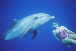 Trish with Bottlenose Dolphin